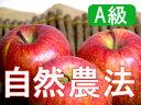 【A級品】竹嶋有機農園の自然農法りんごふじ <5kg>☆ぜひ、ガブっと丸かじり!