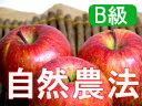 【B級品】竹嶋有機農園の自然農法りんごふじ <5kg>※ワケあり・傷あり 家庭用※4月以降は、冷蔵便でのお届けとなります