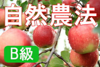 Houzumi organic farm natural farming apples Jonagold < 5 kg] * why there and scratch and household