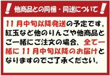 【特選品】竹嶋さんの自然農法りんごふじ<5kg>【11月下旬以降発送予定】