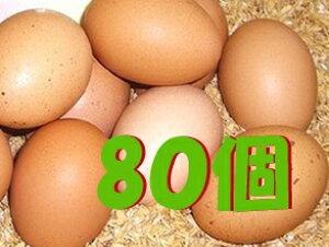 【常温便送料込/一部地域別途】太陽食品の平飼い有精卵★「たいようの幸せたまご」80個※運動たっぷりの平飼い鶏から生まれた元気な卵です!※常温配送(6〜9月は冷蔵配送)