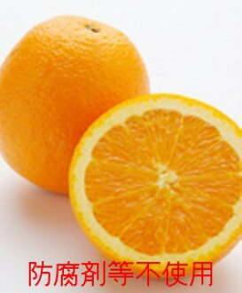 One non-chemical navel orange ※Chemical pesticide 60% or more decrease, artificial manure 90% or more decrease