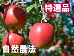 【特選品】竹嶋有機農園の自然農法りんごジョナゴールド <「5kg箱」入り>