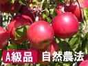 【A級品】竹嶋有機農園の自然農法りんご紅玉 <「4.5kg箱」入り> ☆ぜひ、ガブっと皮ごと丸かじり!/有機同等 果物