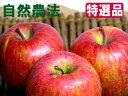 【特選品】竹嶋有機農園の自然農法りんごふじ <「5kg箱」入り