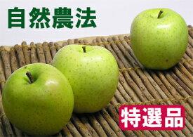 【特選品】竹嶋有機農園の自然農法りんご王林 <「5kg箱」入り>【常温便送料込/※沖縄・九州は送料加算】