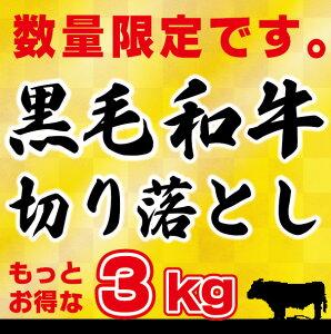 【訳アリ】【送料無料】黒毛和牛 3kg 切り落とし肉 (国内産)もっとお得な3kg (250g×12) 小分けで便利牛肉 切落し 切り落し 送料込み 訳あり 国産 牛丼 炒め物 鉄板焼肉 肉じゃが 手巻き寿