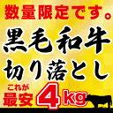 【訳アリ】【送料無料】黒毛和牛 4kg 切り落とし肉 (国内産)これが最安値 4kg (250g×16) 小分けで便利牛肉 切落…