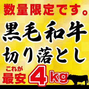 送料無料 【訳アリ】黒毛和牛 4kg 切り落とし肉 (国内産)これが最安値 4kg (250g×16) 小分けで便利牛肉 切落し 切り落し 訳あり 国産 牛丼 炒め物 鉄板焼肉 肉じゃが 手巻き寿司 肉うどん
