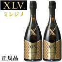 『正規品ヴィトンシャンパン』ブランドワイン【 XLV ブジーグランクリュ ミレジメ黒箱750ml×2本 】第5代目ヴィトンフ…