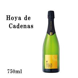 【スパークリングワイン:辛口泡白】カバスペイン産『 オヤ・デ・カデナス・ブルット ナトゥーレ泡白 』[Hoya de Cadenas Cava Brut Nature]SSspecial03mar13_food