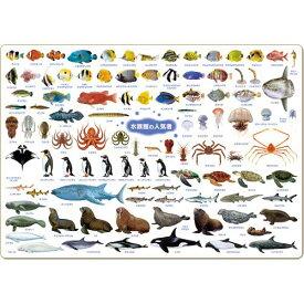 ザ・アクセス 海の生き物 図鑑 下敷き A4 水族館の人気者 大全シリーズ