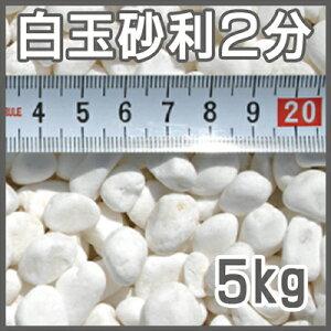 【送料無料】白玉砂利2分【5kg】【6mm】