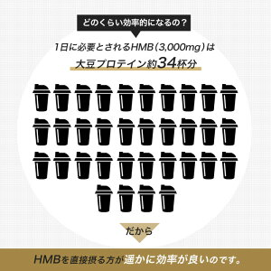 大豆プロテイン34杯分