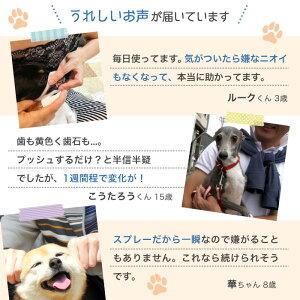 歯みがきスプレー犬ペット口臭歯石歯垢口腔歯周病予防デンタルケア歯磨き国産50ml約4か月分