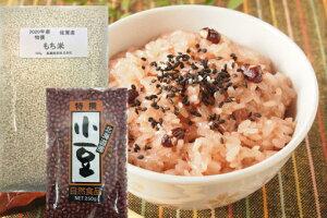 もち米 小豆 セット 新米佐賀産もち米(500g) 新穀北海道小豆(250g) 赤飯セット 送料無料 高鍋商事