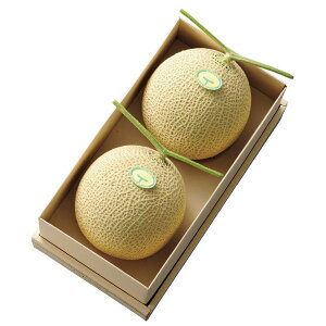 【公式】 新宿高野 マスクメロン2個入A #11013 | 高級メロン 高級フルーツ メロン 果物 フルーツ ギフト 内祝い お土産 手土産 フルーツギフト くだもの お返し プレゼント 退職 お礼 結婚内祝