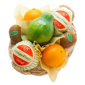 【公式】 新宿高野 フルーツバラエティーEA #29100 果物 ギフト くだもの 詰め合わせ 贈答用 内祝い お返し 盛り合わせ フルーツ フルーツ詰め合わせ フルーツセット プレゼント お見舞い 退職