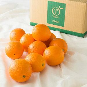 【公式】 新宿高野 Day Fruit デイフルーツ オレンジ #29100 | フルーツ ギフト 果物 内祝い 内祝 フルーツギフト 引越し内祝い 新築内祝い 開店内祝い お見舞い 高級 高級フルーツ お祝い くだも