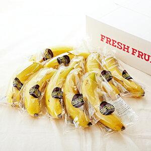【公式】 新宿高野 Day Fruit デイフルーツ バナナ #29100 | ばなな フルーツ 果物 くだもの 自宅用 ご自宅用 10本 美味しい おいしい プレゼント 暑中見舞い 高級 お盆 初盆 新盆 お取り寄せ 高級
