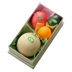 【公式】 新宿高野 マスクメロン&トロピカルフルーツセット #11280|ギフト プレゼント 内祝い お返し 退職 お礼 フルーツ 果物 くだもの 詰め合わせ フルーツセット 盛り合わせ 高級 贈答用