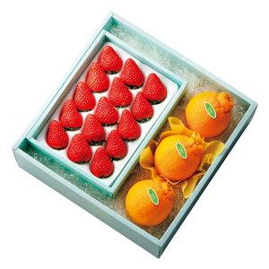 【公式】 新宿高野 ストロベリーセットB #15141?ギフト プレゼント 冬ギフト 内祝い お返し お歳暮 御歳暮 歳暮 退職 お礼 贈り物 フルーツ 果物 くだもの 結婚内祝い ストロベリー 苺 イチゴ
