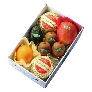【公式】 新宿高野 トロピカルフルーツセット#53280   ギフト プレゼント 内祝い 内祝 お返し 退職 お礼 フルーツ 果物 くだもの 詰め合わせ お見舞い フルーツセット 盛り合わせ 高級 贈答用