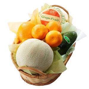 【公式】 新宿高野 父の日 フルーツバラエティーA | フルーツ フルーツギフト 父の日ギフト 父の日プレゼント 2020 果物 くだもの 高級 ギフト 父の日のプレゼント 高級フルーツ お祝い フル