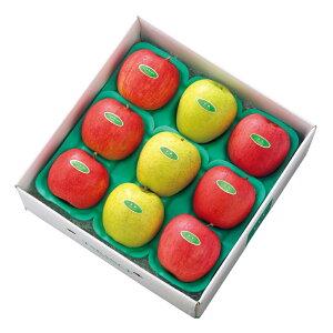 【公式】 新宿高野 アップルトリオ9入 #51477   ギフト プレゼント 内祝い 内祝 お返し 退職 お礼 フルーツ 果物 くだもの 詰め合わせ りんご リンゴ 林檎 お見舞い 盛り合わせ 贈答用 高級 フル