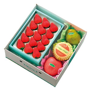 【公式】 新宿高野 ストロベリー&旬果 #53266 ? ギフト プレゼント 冬ギフト 内祝い 内祝 お返し お歳暮 御歳暮 歳暮 退職 お礼 贈り物 フルーツ 果物 くだもの 結婚内祝い 苺 いちご イチゴ