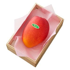 【公式】 新宿高野 大玉宮崎マンゴー1入 #29100|果物 くだもの お取り寄せフルーツ お取り寄せ 内祝い お祝い ギフト プレゼント お礼 お返し マンゴー 高級 フルーツギフト 結婚内祝い 出産内