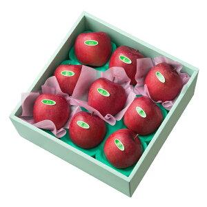 【公式】 新宿高野 ふじ9入 #29100|フルーツ ギフト 果物 内祝い 内祝 フルーツギフト 引越し内祝い 新築内祝い 開店内祝い お見舞い 高級 高級フルーツ 高級りんご りんご 贈答用 詰め合わせ