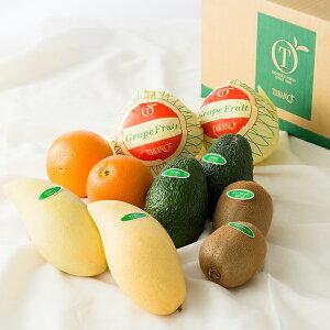 【公式】 新宿高野 Day Fruit デイフルーツセットA #29100|フルーツ ギフト 果物 内祝い 内祝 フルーツギフト 引越し内祝い 新築内祝い 開店内祝い お見舞い 盛り合わせ フルーツ詰め合わせ 詰め