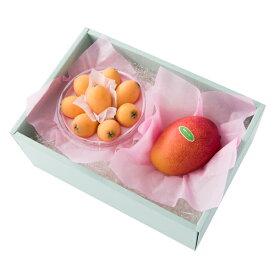 新宿高野 宮崎マンゴー&温室栽培 枇杷パック #29100
