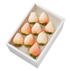 【公式】 新宿高野 初恋の香り9 #29100 ? フルーツ ギフト 果物 内祝い 内祝 フルーツギフト 引越し内祝い 新築内祝い 開店内祝い お見舞い 高級 高級フルーツ いちご 白いちご 白イチゴ 白苺
