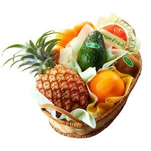 【公式】 新宿高野 父の日 フルーツバラエティーD | フルーツ フルーツギフト 父の日ギフト 父の日プレゼント 2020 果物 くだもの 高級 ギフト 父の日のプレゼント 高級フルーツ お祝い フル