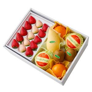【公式】 新宿高野 紅白いちご&旬果B #29100?フルーツ ギフト 果物 内祝い 内祝 高級 いちご フルーツギフト 引越し内祝い 新築内祝い 開店内祝い お見舞い 盛り合わせ フルーツ詰め合わせ
