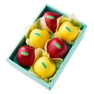 【公式】 新宿高野 ふじ&シナノゴールドA #29100|フルーツ ギフト フルーツギフト 果物 くだもの プレゼント お祝い 御祝 内祝い 内祝 お供え お礼 りんご リンゴ シナノ ゴールド お見舞い 結