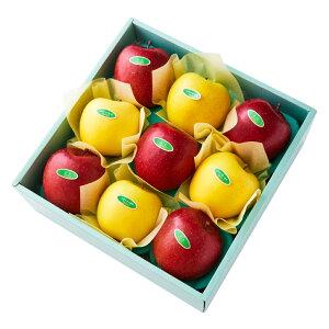 【公式】 新宿高野 ふじ&シナノゴールドB #29100 | フルーツ ギフト フルーツギフト 果物 くだもの プレゼント お祝い 御祝 内祝い 内祝 お供え お礼 りんご リンゴ シナノ ゴールド 信濃 お見