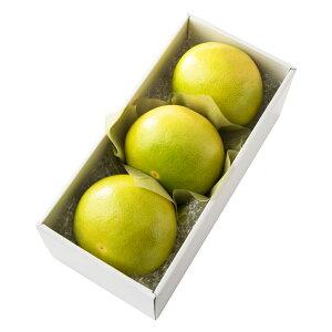 【公式】 新宿高野 メロゴールド3入 #29100 ? フルーツ ギフト 果物 内祝い 内祝 フルーツギフト 引越し内祝い 新築内祝い 開店内祝い お見舞い 高級 高級フルーツ お祝い くだもの 柑橘 柑橘