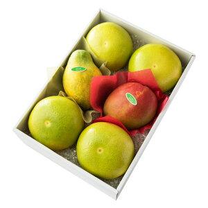 【公式】 新宿高野 メロゴールド&旬果C #29100 ? フルーツ ギフト 果物 内祝い 内祝 フルーツギフト 引越し内祝い 新築内祝い 開店内祝い お見舞い 盛り合わせ フルーツ詰め合わせ 詰め合わ