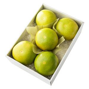 【公式】 新宿高野 メロゴールド5入 #29100 ? フルーツ ギフト 果物 内祝い 内祝 フルーツギフト 引越し内祝い 新築内祝い 開店内祝い お見舞い 高級 高級フルーツ お祝い くだもの 柑橘 柑橘
