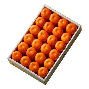 【公式】 新宿高野 河内高野みかんB #12089 | フルーツ ギフト フルーツギフト 果物 くだもの プレゼント お祝い 御祝 内祝い 内祝 お供え お礼 みかん ミカン 蜜柑 オレンジ お見舞い 結婚祝い