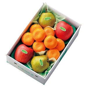 【公式】 新宿高野 ウインターフルーツB #53334 | フルーツ ギフト フルーツギフト 果物 くだもの プレゼント お祝い 御祝 内祝い 内祝 お供え お礼 みかん ミカン 蜜柑 りんご リンゴ 林檎 お見
