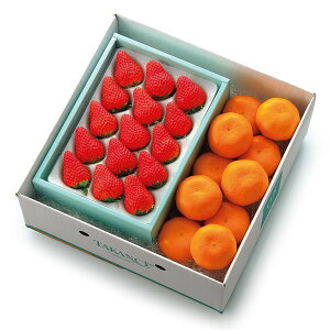 【公式】 新宿高野 ストロベリー&みかん #51354|フルーツ ギフト フルーツギフト 果物 くだもの プレゼント お祝い 御祝 内祝い 内祝 お供え お礼 みかん ミカン 蜜柑 いちご イチゴ 苺 お見舞