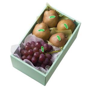 【公式】 新宿高野 紫苑ぶどう&ゴールド ラ・フランス #29100 | フルーツ ギフト フルーツギフト 果物 くだもの プレゼント お祝い 御祝 内祝い 内祝 お供え お礼 ぶどう ブドウ 葡萄 ラフラン