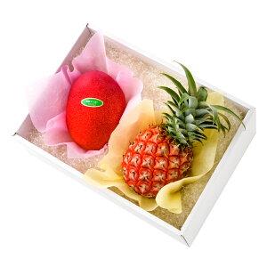 【公式】 新宿高野 宮崎マンゴー&沖縄ミニパイン #29100 | 果物 くだもの お取り寄せフルーツ お取り寄せ 内祝い お祝い ギフト プレゼント お礼 お返し マンゴー パイン 高級 フルーツギフト