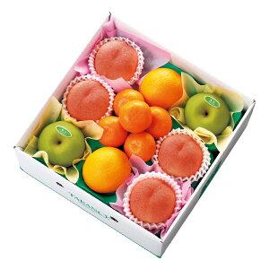 【公式】 新宿高野 サマーフルーツセットB #53235|フルーツ ギフト 果物 くだもの 高級 高級フルーツ お取り寄せ プレゼント お中元 御中元 御中元ギフト 暑中見舞い お礼 フルーツ詰め合わせ