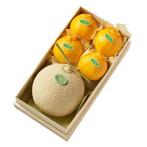 【公式】 新宿高野 マスクメロン&デコポン #29100 | 果物 くだもの お取り寄せフルーツ お取り寄せ フルーツ 取り寄せ 果実 内祝い お祝い お礼 お返し 結婚内祝い 新築内祝い デコポン 柑橘