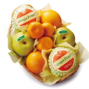 【公式】 新宿高野 フルーツバラエティーC #23184|果物 くだもの 高級 高級フルーツ お取り寄せ プレゼント お中元 御中元 御中元ギフト 暑中見舞い お礼 フルーツ詰め合わせ 盛り合わせ 内祝